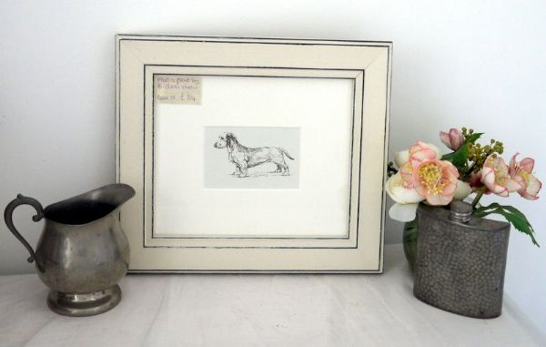 Wire Haired Dachs - Dax O1 -  1960's print by Bridget Olerenshaw